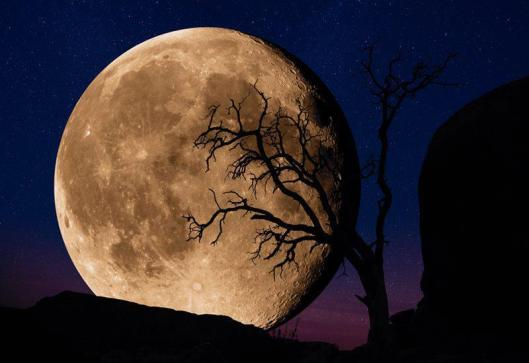 Happy Full Moon Friday!