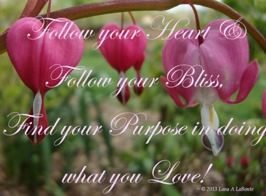 FollowYourHeartBleedingHearts